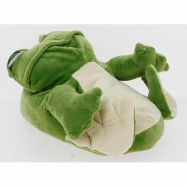 Groene kikker sloffen voor dames