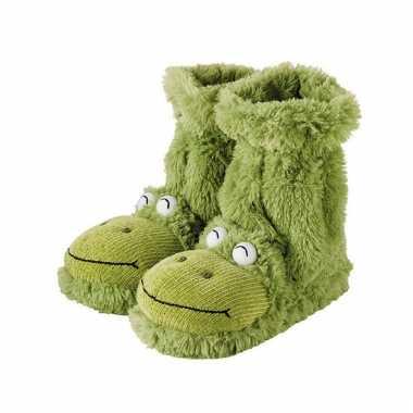 Warme sokken groene kikker